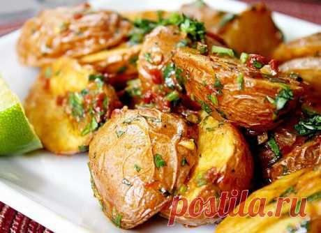 Картошка, запеченная в духовке – 10 самых простых и вкусных рецептов