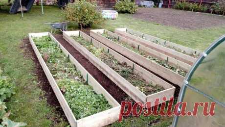 Грядки бывают разные: семь «урожайных» идей для огорода – Моя Околица