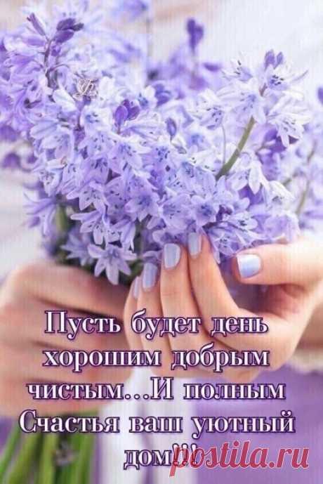 Утра доброго , друзья !!! 🌱☀🌱