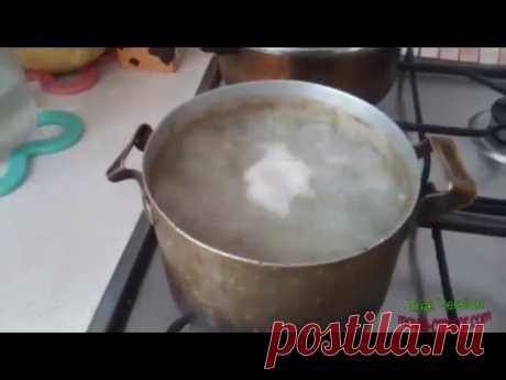 готовлю для собаки
