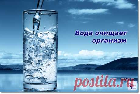 Сколько пить воды и зачем?