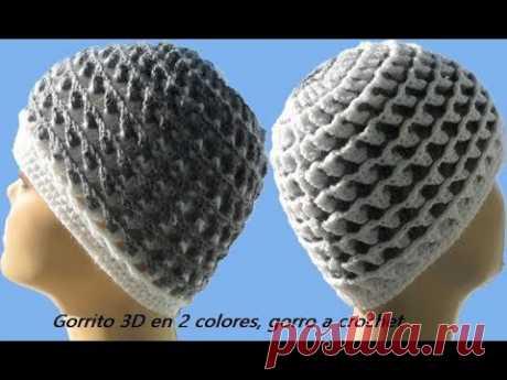 Gorrito 3D en 2 colores, gorro a crochet Gorro №98