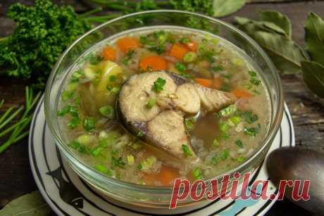 Простой рыбный суп из скумбрии со стручковой фасолью. Пошаговый рецепт с фото — Ботаничка.ru