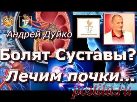💦Если болят суставы лечи почки ⚡ Рецепты лечения куриным желтком💎Андрей Дуйко школа Кайлас 💦
