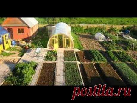 Грядки - планировка, соседство овощных культур - YouTube