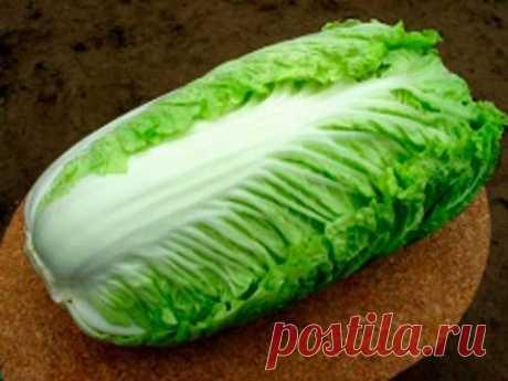 Как вырастить пекинскую капусту - YouTube