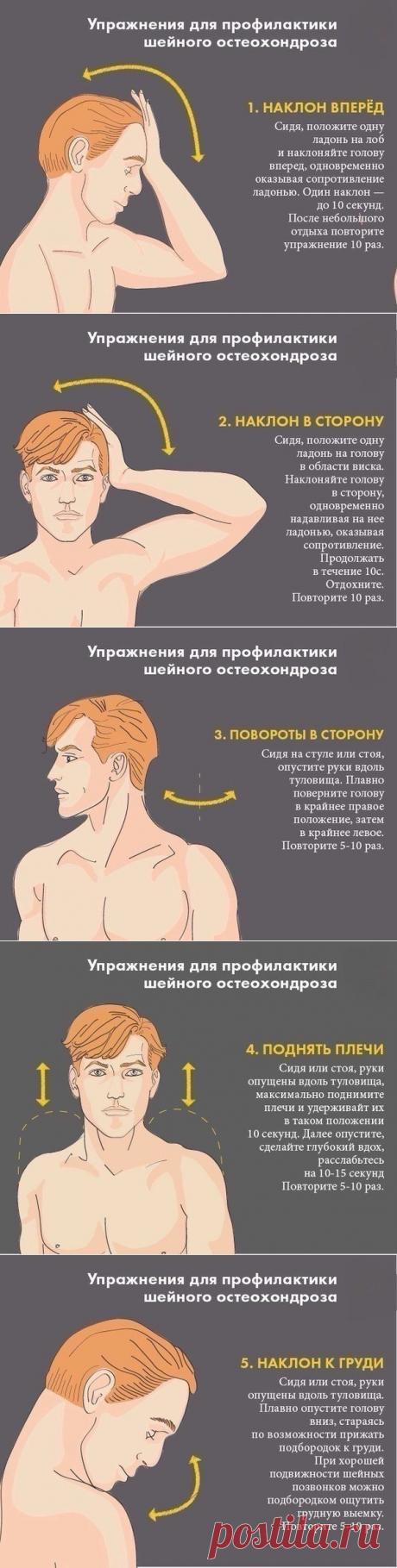 Упражнения для профилактики шейного остеохондроза — СОВЕТНИК