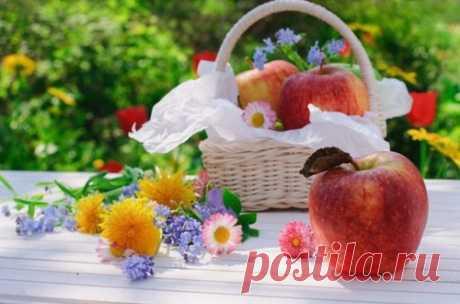 Яблочный Спас в 2020 году: какого числа, традиции, приметы, обряды