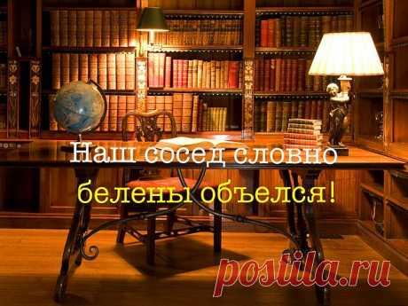 Тест: Только 15% россиян набирают 10/10 в этом тесте на знание русских выражений - onedio.ru