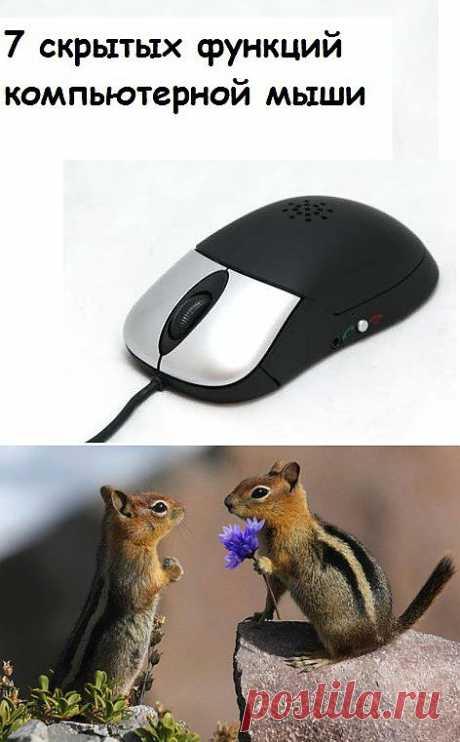 Компьютерный ликбез. Полезные функции мышки.