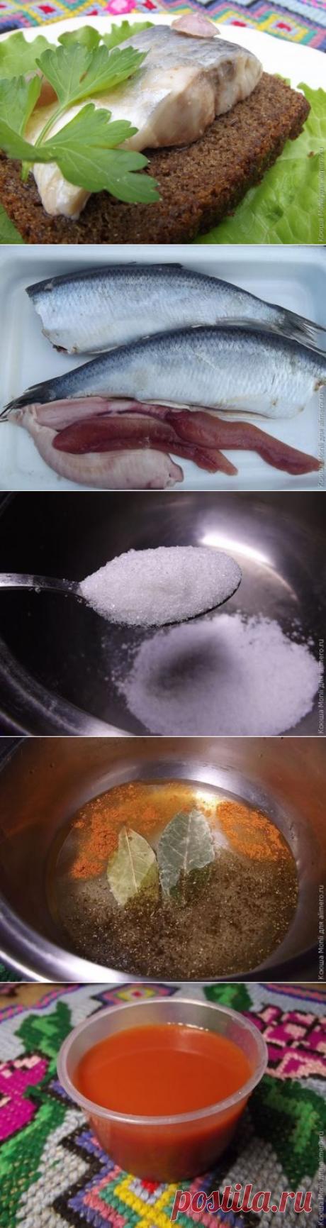 👌 Маринованная селедка в томатном соке, рецепты с фото