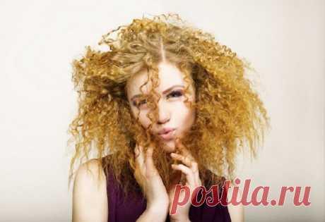 Рецепт маски для волос из крапивы - Образованная Сова Когда не было шампуней и кондиционеров, волосы мыли травами. Ходили чистыми и ухоженными благодаря тому, что умели пользоваться дарами природы. Одним из таких была и остается крапива. Она для волос просто спасение: от выпадения, жирности, тусклости. А использование масла, приготовленного на основе крапивы, помогает решить проблему секущихся кончиков. Крапива от выпадения волос ИНГРЕДИЕНТЫ 500 г …