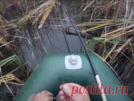 Только этой снастью можно наловить много карасей в октябре-ноябре   Рыбалка, рецепты блюд, здоровье   Яндекс Дзен