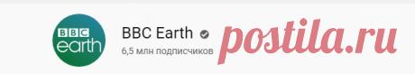 (12) BBC Earth - YouTube