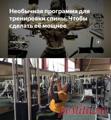 Необычная программа для тренировки спины. Чтобы сделать её мощнее | fitnechannel | Яндекс Дзен