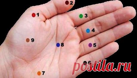 Нажмите на эти точки на ладони — и результаты вас очень поразят!