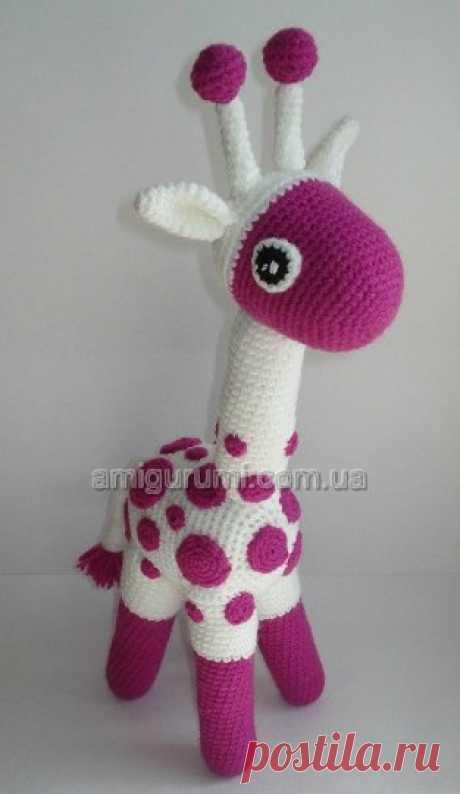 Описание жирафа крючком