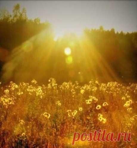 Сегодня отмечается Всемирный День солнца! 🌞 Поделитесь своими солнечными фотографиями в комментариях! Улыбнемся теплым весенним лучам вместе.😘
