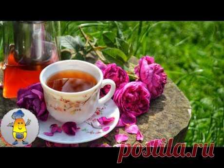 ФЕРМЕНТАЦИЯ ЧАЙНОЙ РОЗЫ от А до Я. Как правильно ферментировать лепестки для чая.