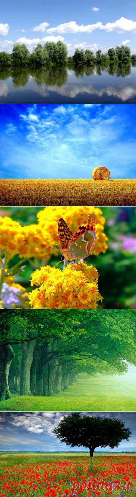 Лето, красивые летние пейзажи видео, картинки (64 фото)