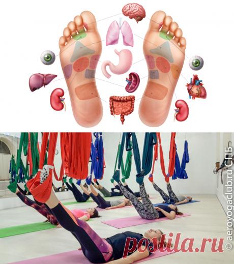 Йога, стопы, рефлексология: Рефлекторные зоны стоп Йога и фитнес в гамаках Аэро йога СПБ