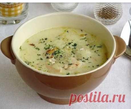 Английский куриный суп с плавленым сыром — Sloosh – кулинарные рецепты