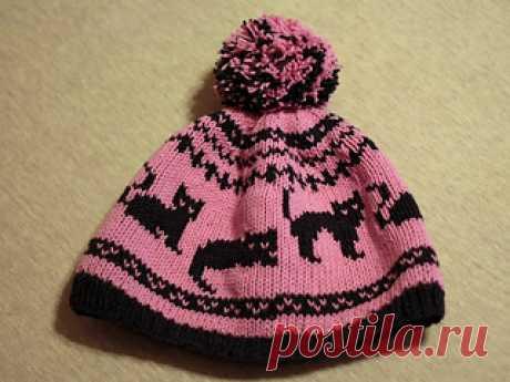 шляпа Yano4ka с кошками: Ravelry