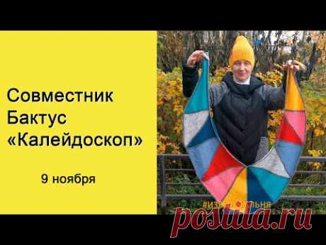 """Бактус """"Калейдоскоп"""". Новый совместник"""