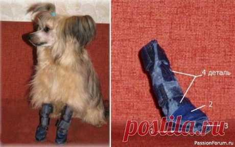 Обувь для собаки своими руками – выкройки и пояснения к ним. | Швейная мастерская