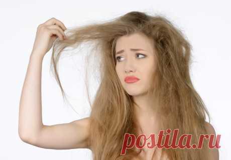 5 советов по уходу за пористыми волосами