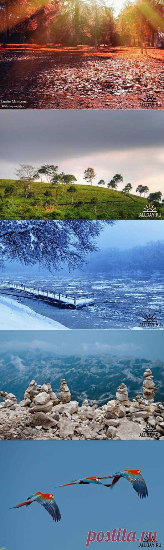 Мир в Фотографии - World In Photo 909 » ALLDAY - народный сайт о дизайне