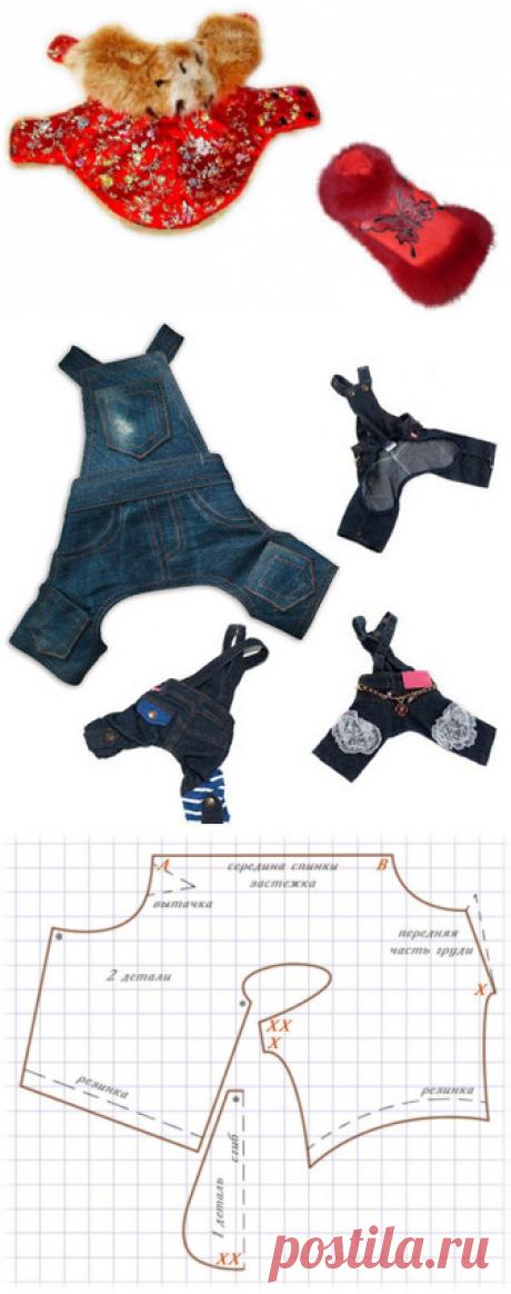 Одежда - о собаках: китайских хохлатых, бульдогах, чау-чау, терьерах и т.д. и не только ...
