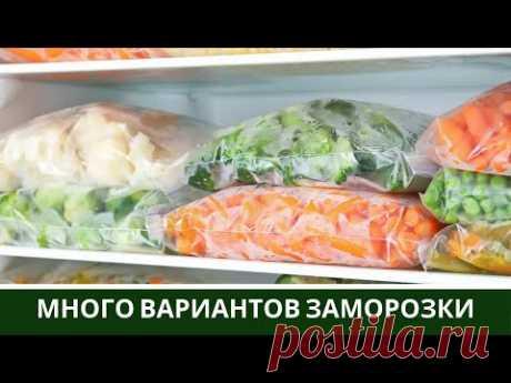 🍆Заморозка Овощей на Зиму 🍅 Заморозка Полуфабриктов на месяц