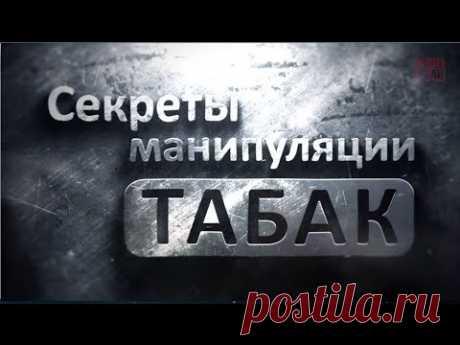 Секреты манипуляции - Табак ( Курение ) Проект Общее Дело - YouTube
