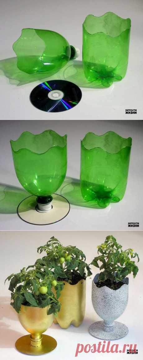 Горшки для цветов из пластиковой бутылки.