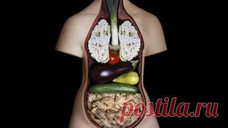 Продукты полезны для той части тела, на которую похожи