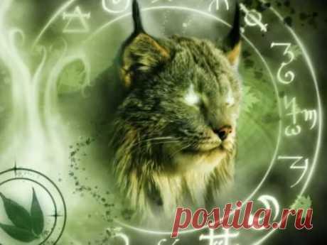 Зороастрийский гороскоп по дате рождения Самым древним гороскопом извсех существующих является зороастрийский. Онвыстроен наоснове верования ототемных животных.