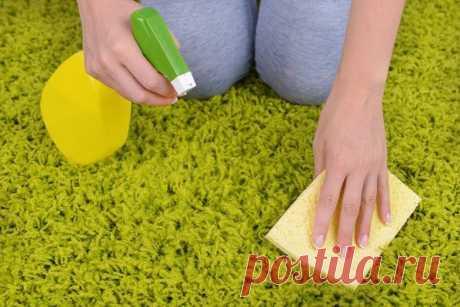 3 проверенных способа очистить ковёр без химии — Лайфхаки