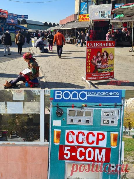 «Мы не придурки какие-нибудь». Почему русский язык обожают в Киргизии? | В мире | Политика | Аргументы и Факты