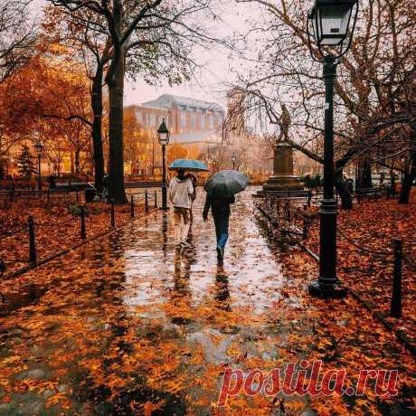 What I Saw In NYC в Instagram: «Photo by @zachasato Washington Square Park  Maybe I'm just in Love ... #travelwriter #travel#instatravel #travelgram #instago#passportready…» 11.1 тыс. отметок «Нравится», 56 комментариев — What I Saw In NYC (@what_i_saw_in_nyc) в Instagram: «Photo by @zachasato Washington Square Park  Maybe I'm just in Love ... #travelwriter…»