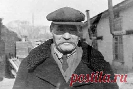 Как поступили с Иваном Поддубным после немецкой оккупации - Любители истории - медиаплатформа МирТесен