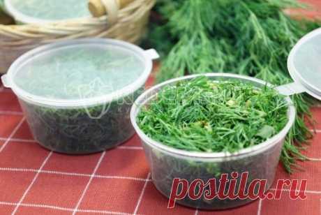 Укроп на зиму (заморозка) Свежий укроп замороженный в маленьких контейнерах, которые так удобно хранить и использовать, придаст аромат и вкус вашим зимним блюдам.