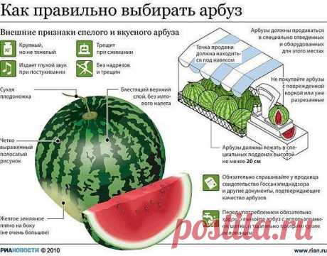 Как правильно выбрать арбуз - Простые рецепты Овкусе.ру