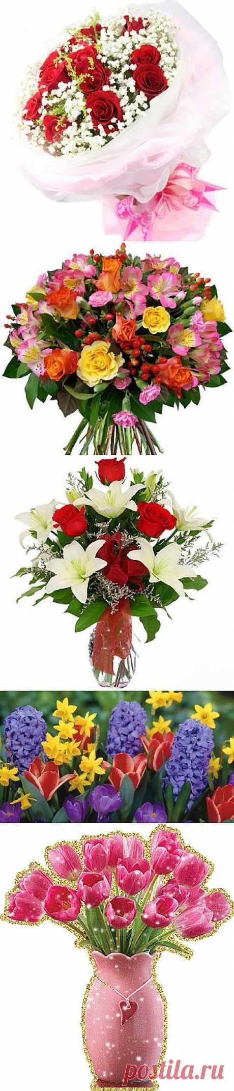 Букеты - красивые фото и картинки лучших букетов цветов