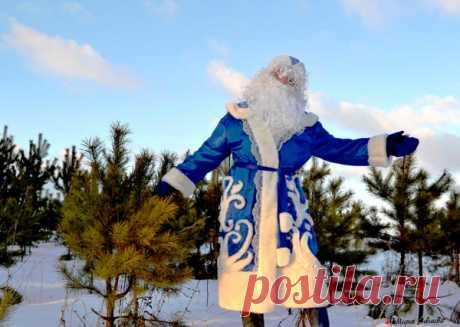 Как сшить костюм Деда Мороза своми руками для взрослых + выкройка Мастер-класс: как сшить костюм Деда Мороза своими руками, не потратив ни копейки. Выкройка, подробное описание работы, оригинальный декор костюма, аксессуары, интересные идеи.