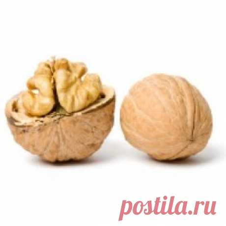 Грецкий орех Прародина грецких орехов – Средняя Азия. Однако в настоящее время существуют сорта морозоустойчивые грецкого ореха. Культура данная распространилась севернее, и известна на новых местах богатыми урожаями. В грецком орехе содержится много жиров - 75 процентов, белков – 15 процентов, жирные