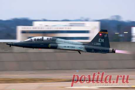 Фото Northrop T-38 Talon (66-8395) - FlightAware
