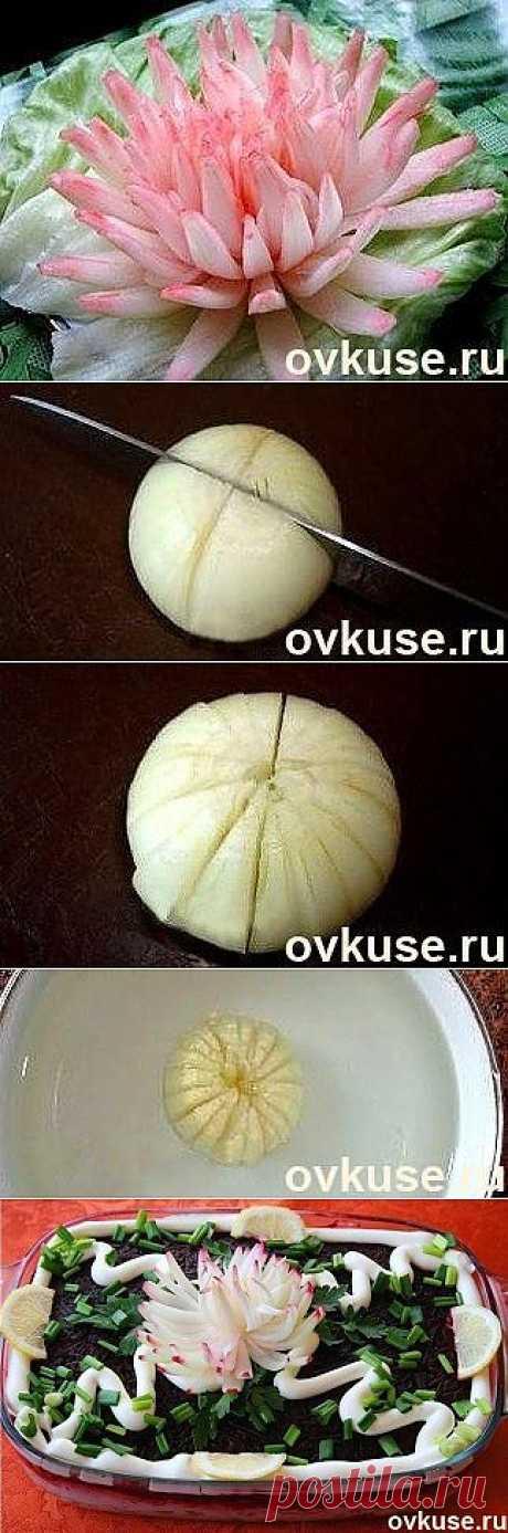 ХРИЗАНТЕМА ИЗ ЛУКОВИЦЫ... - Простые рецепты Овкусе.ру