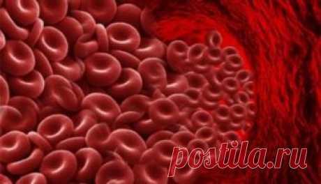 Густая кровь, причины и лечение народными методами   Советы целительницы