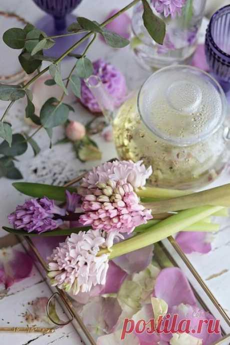 Пусть в сердце всегда будет весна: обновляются мысли и расцветают чувства.  © Олег Рой